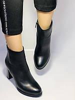 Женские модельные ботинки на каблуке. Натуральная кожа. Люкс качество. Erisses. Р. 35.36.37.38.40.Vellena, фото 7