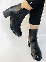 Жіночі черевики. На середньому каблуці. Натуральна шкіра. Люкс якість. Polann. Р. 36.37.40. Vellena, фото 5