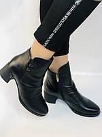 Жіночі черевики. На середньому каблуці. Натуральна шкіра. Люкс якість. Polann. Р. 36.37.40. Vellena, фото 3