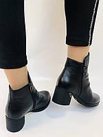 Жіночі черевики. На середньому каблуці. Натуральна шкіра. Люкс якість. Polann. Р. 36.37.40. Vellena, фото 10
