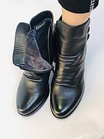 Жіночі черевики. На середньому каблуці. Натуральна шкіра. Люкс якість. Polann. Р. 36.37.40. Vellena, фото 9