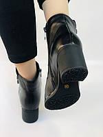 Жіночі черевики. На середньому каблуці. Натуральна шкіра. Люкс якість. Polann. Р. 36.37.40. Vellena, фото 8