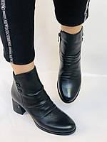 Жіночі черевики. На середньому каблуці. Натуральна шкіра. Люкс якість. Polann. Р. 36.37.40. Vellena, фото 2