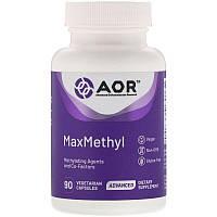 Advanced Orthomolecular Research AOR, MaxMethyl, 90 растительных капсул