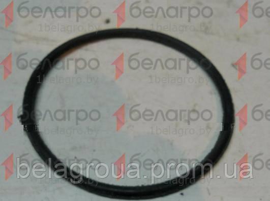 100-105-30-2-2 Кольцо (100-3514033), Беларусь