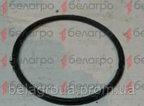 100-105-30-2-2 (100-3514033) Кольцо уплотнительное, Беларусь