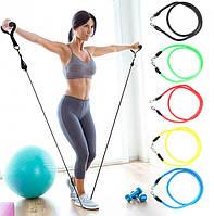 Набор трубчатых эспандеров для фитнеса и упражнений 5 жгутов power resistance bands