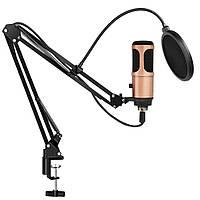 Студийный микрофон Music D.J. M900U USB со стойкой и поп-фильтром Bronze (7331)