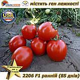 "Семена, томат 2206 F1 (ранний, лежкий) ТМ ""Lark Seeds (США), упаковка 5 000 семян, фото 2"
