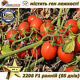 "Семена, томат 2206 F1 (ранний, лежкий) ТМ ""Lark Seeds (США), упаковка 5 000 семян, фото 4"
