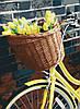 """Картина по номерам. Art Craft """"Желтое настроение"""" 40*50 см 13112-AC"""