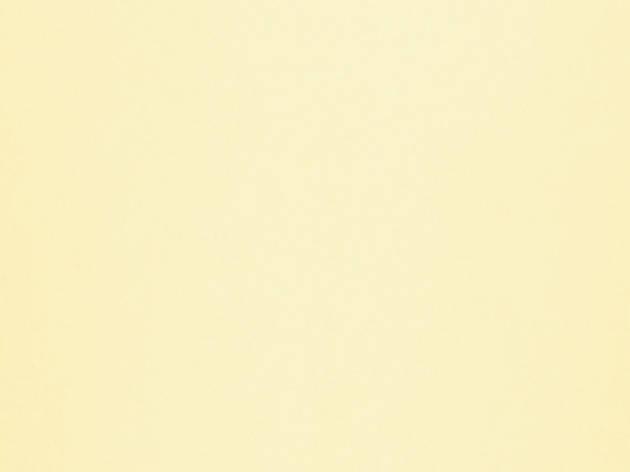 ЛДСП SWISSPAN PE ВАНИЛЬ 2750X1830X18, фото 2