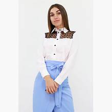 Блузки та сорочки
