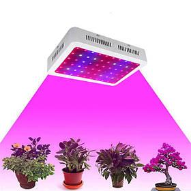 Світлодіодне освітлення для рослин