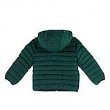 Демисезонная куртка для мальчика F20M1251 RoyalGreen. Размеры 2 - 14 лет., фото 2
