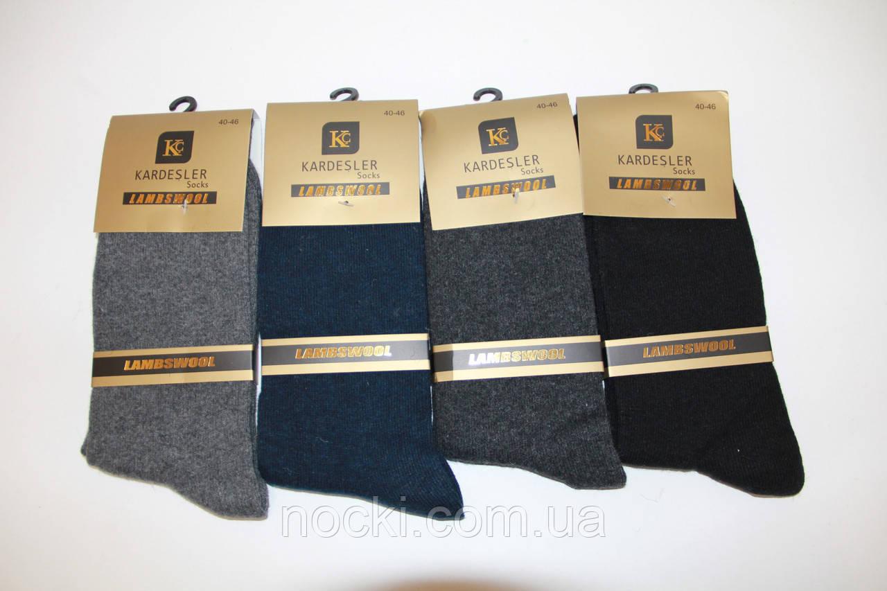 Чоловічі шкарпетки вовняні високі гладкі Кардешлер 09