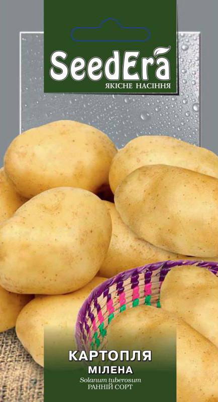 Семена Картофель Милена 0.02 г Seedera 2756