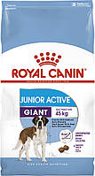 Royal Canin Giant Active 15 кг сухой корм (Роял Канин) для щенков собак очень крупных пород