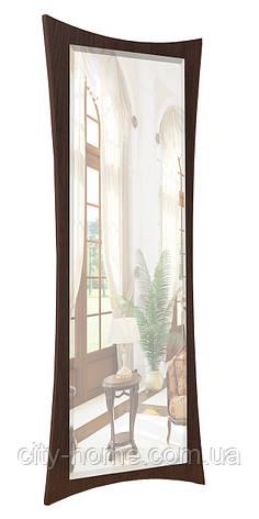 Зеркало ростовое с фацетом 1300х550, фото 2
