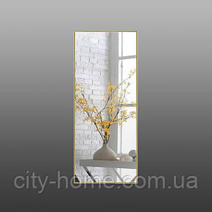 Зеркало в рост золото - хром, фото 2