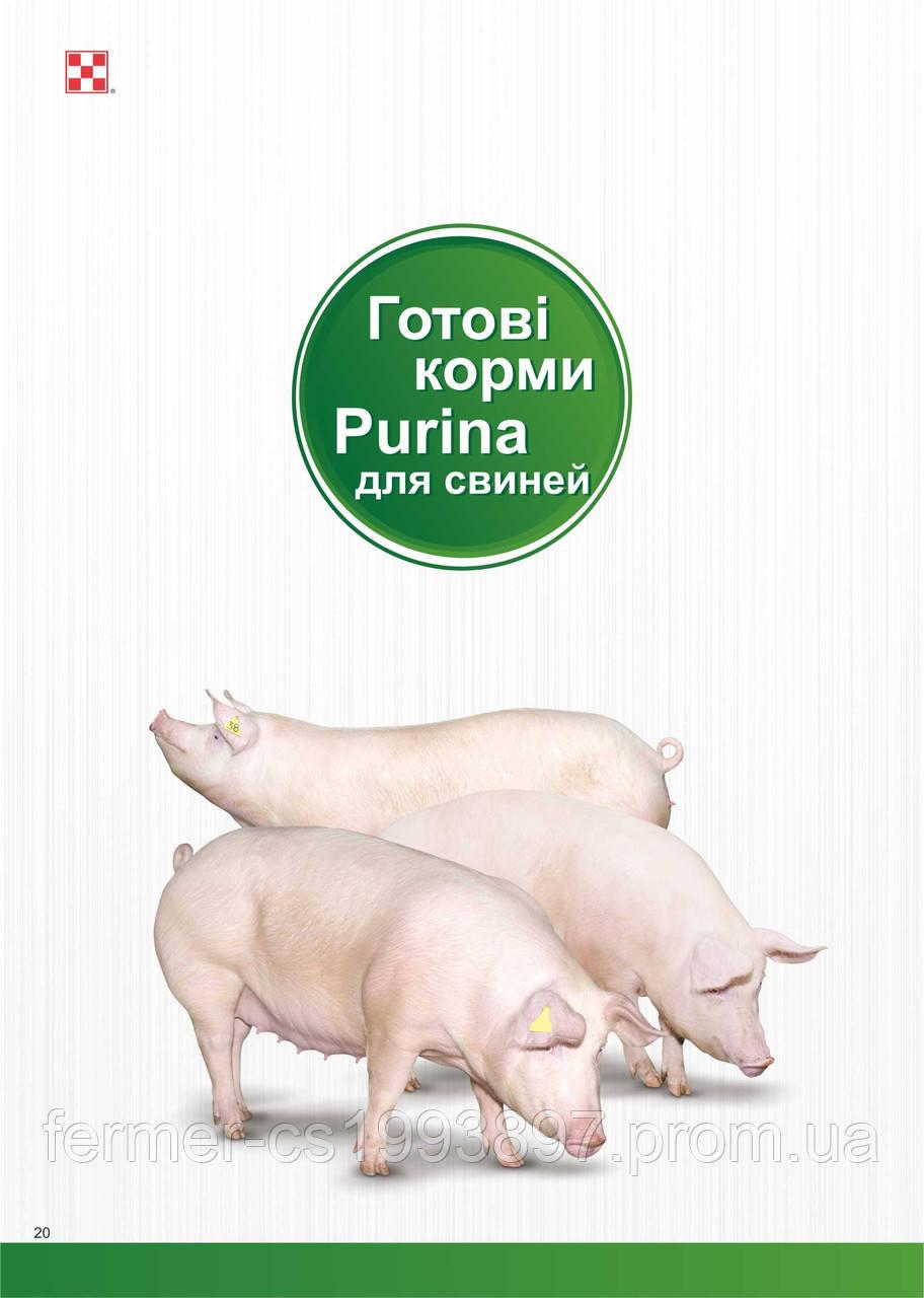 7fd21976cc3b62 Готовий корм для свиней стартер пуріна® Повнораціонний комбікорм для  поросят вагою 10-25 кг