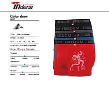Мужские стрейчевые боксеры «INDENA»  АРТ.95041, фото 2