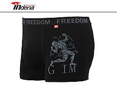 Мужские стрейчевые боксеры «INDENA»  АРТ.95041, фото 3