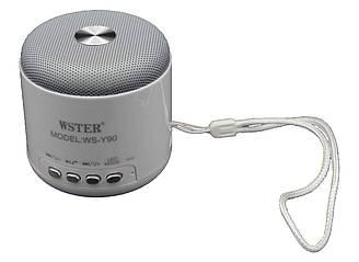 Портативная Колонка WSTER WS-Y90B Wiriless + Bluetooth + FM 87.5 - 108 MHz + TFT Card +  USB + PC