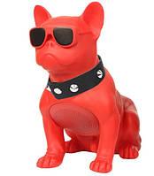 Музыкальная USB колонка собака (бульдог) красный, портативная bluetooth акустика c флешкой