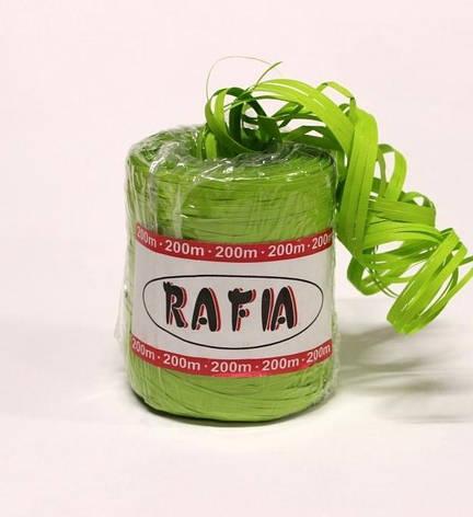 Рафия 200м - Зеленая, фото 2