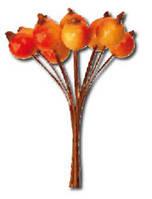 Букет для декорирования Плоды шиповника