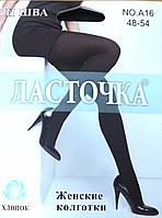 Колготки хлопок черные Ласточка 48-54 р.