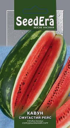 Семена Арбуз Полосатый рейс 1 г SeedEra 2751, фото 2