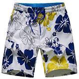 Мужские шорты гавайки DM Dj8784, фото 2