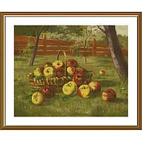 """Набор для вышивки нитками на канве с фоновым изображением """"В летнем саду"""""""