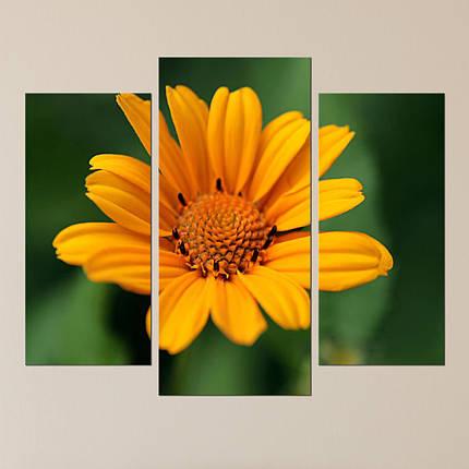 """Модульная картина """"Яркий цветок"""", фото 2"""