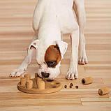 Интерактивная игрушка-головоломка для собак Dog Smart Composite Outward Hound Nina Ottosson, фото 3