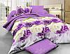 Полуторный комплект постельного белья 150х220 Ранфорс-хлопок 100% (11606)