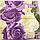 Полуторный комплект постельного белья 150х220 Ранфорс-хлопок 100% (11606), фото 6