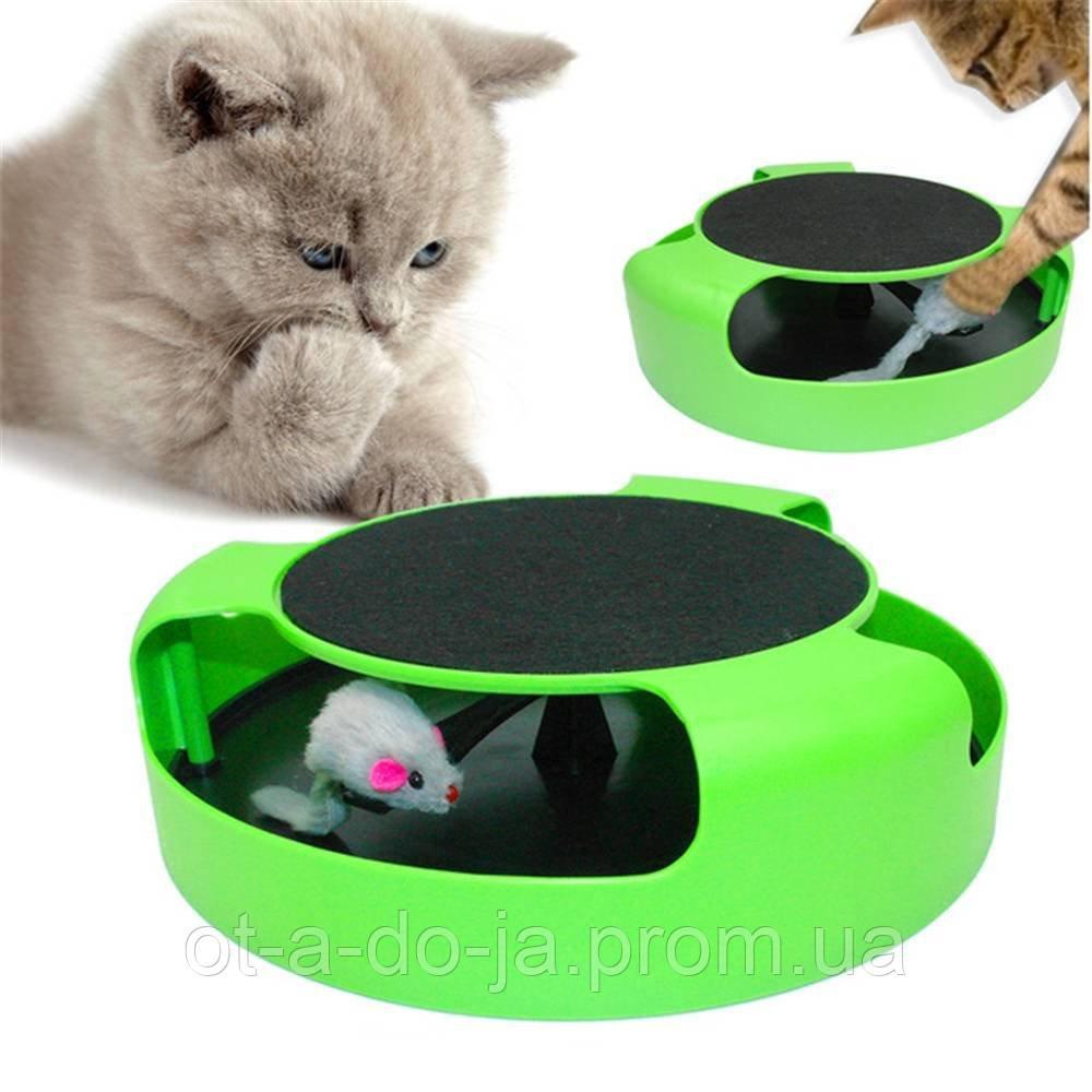 Игрушка-когтеточка для кошек Catch the Mouse Поймай мышь Зеленая