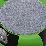 Игрушка-когтеточка для кошек Catch the Mouse Поймай мышь Зеленая, фото 5