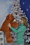 Мягкая игрушка Медведь Бублик, фото 10