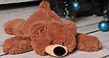 Мягкая игрушка Медведь Умка, фото 6