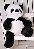 Мягкая игрушка Панда, фото 6