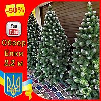 Заснеженная искусственная елка Снежная Королева 2,2 м, новогодние искусственные пвх ели елки и сосны с инеем