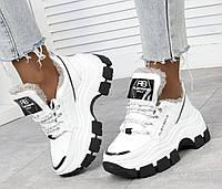 Зимние кроссовки женские из натуральной кожи на высокой подошве удобные белые 41 размер Alex Benz 2053