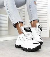 Зимние кроссовки женские кожаные на высокой платформе теплые белого цвета 41 размер Alex Benz 2053