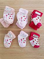 """Шкарпетки махра для новонароджених.""""Love"""" Туреччина.Оптом"""