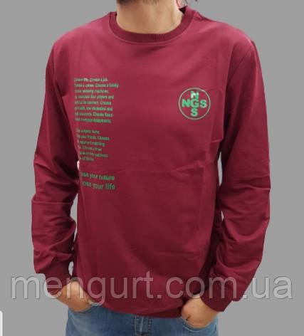 Модные мужские толстовки с принтом mengurt.com.ua, фото 2