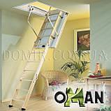 Горищні сходи OMAN, фото 9